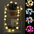 ​2M 20 Rose Flowers Fairy String Light with Leaf Garland LED  Party Lamps Xmas
