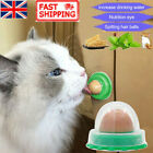 12PCS Cat Treats 'Kitty Chups' Healthy Solid Cat Snacks Catnip Sugar Candy UK