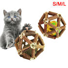 Pet Cat Matatabi Stick Catnip Bell Ball Silvervine Molar Funny Chew Toy Novelty