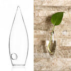 Transparent Ice-piton Wall Hanging Vase Flower Plant Glass Bottle Home Decor Cl