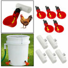 20PCS Poultry Drinking Watering Cups for Chicken Hen/Quail Water Cups Drinker