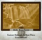 Lithophane Night Light - CASCADING FALLS - Porcelain