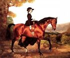 Lady Riding Sidesaddle Quilt Block Multi Szs FrEE ShiPPinG WoRld WiDE
