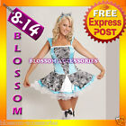 BL1 Palace Alice In Wonderland Fancy Dress Costume