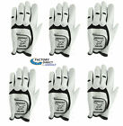 INTECH: MEN'S CABRETTA LEATHER GOLF GLOVES MLH SIX PACK FOR RIGHT HANDED GOLFERS