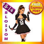 Ladies Cheshire Cat Kitten Alice in Wonderland Fancy Dress Up Costume +Stocking