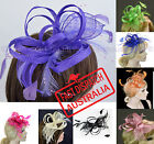 Spring Race Party Melbourne Cup Feather Fascinator Head Piece Brooch Clip Beaded