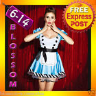 F59 Alice in Wonderland Ladies Disney Fancy Dress Up Halloween Costume Outfit