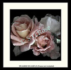 ANTIQUE VINTAGE OLD GARDEN ROSES Romantic Fine ART PRINT by S.G.Rose MANY SIZES!