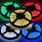 Red/Blue/Green/Cool/Warm White 12V 5M Waterproof 5050 SMD 300LEDs Strip Lights