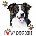 Border Collie Love Pick Your Size Sweatshirt