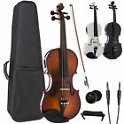 Cecilio Acoustic Electric Ebony Fitted Violin ~Antique Varnish Black White CVNAE