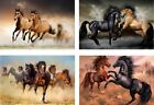 """HORSES MUSTANGS 4 DIFFERENT PICTURES MAGNETS  SET OF 4  ALUMINUM  2"""" X 3"""""""