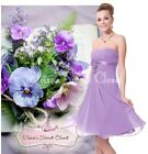 ♥ BNWT RENEE Corsage Lilac Lavender Chiffon Prom Evening Bridesmaid Dress 8 - 12