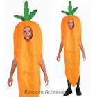 CK276 Carrot Child Food Funny Halloween Boys or Girls Fancy Dress Up Costume