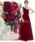 BNWT PIPPA Dark Red Claret Corsage Chiffon Bridesmaid Maxi Long Dress UK 6 -18