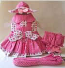 Adorable Dog Dress, Hat, Leash, Panty STRAWBERRY PATCH - X SMALL