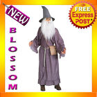 C771 The Lord Of The Rings Gandalf Wizard Fancy Dress Halloween Adult Costume
