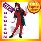 C882 Complete Elf Santa Helper Christmas Fancy Dress Adult Costume