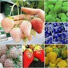 1Pack Rare Delicious Strawberry Seeds Vegetables Fruits Seeds Garden Farm New Q