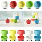 Small Mini Colorful Plastic Flower Planter Pots Home Office Desktop Garden Decor