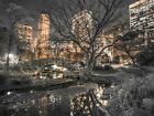 Central Park at Night Giant Wall Mural 315x232cm