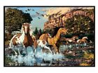 New Gloss Black Framed Hidden Images Horses Running Free Poster