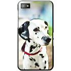 Dalmatian Dog Hard Case For Blackberry Z10