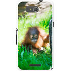 Orangutan Monkey Primates Animal Hard Case For Sony Xperia E4g (E2003)