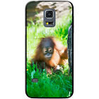 Orangutan Monkey Primates Animal Hard Case For Samsung Galaxy S5 Mini (G800)
