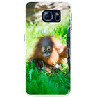 Orangutan Monkey Primates Animal Hard Case For Samsung Galaxy S6 (G920)