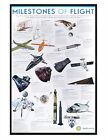 Smithsonian Institution Gloss Black Framed Milestones of Flight Poster 61x91.5cm