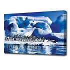 LARGE PENGUINS CANVAS PRINT 2095