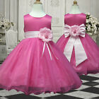 4USD58 Pink Kid's Clothing Wedding Christmas Flower Girl Dress Ages 1 to 14