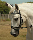 RHINEGOLD QUALITY GERMAN LEATHER PADDED BRIDLE, SILVER PIPING -FLASH - BLACK COB
