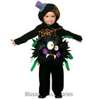 CK729 Spider Toddler Itsy Bitsy Costume Boys Girls Fancy Dress Halloween Outfit