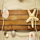 STARFISH SEASHELL ROPE BEACH COASTERS  SET U PICK SET SIZE