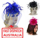 Melbourne Cup Spring Races Racing Carnival Headband Flower Hatinator Fascinator