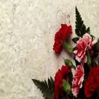 CARNATIONS PINK AND RED COASTERS U PICK SET SIZE