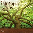 The Majesty Of Trees 2017 Square Calendar 30x30cm