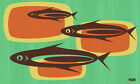 Fishbowl by Now Modern Retro Fish 1960s Home Decor Colors Canvas Fine Art Print