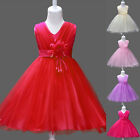 Flower Little Girls Baby Dress Bridesmaid Party Wedding Kids Princess Tulle Gown