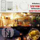 30 50 100 LED Battery Powered Copper Wire Christmas String Fairy Light W Remote
