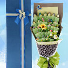 New Cute Totoro Doll Toys Bouquet Gift Flowers For Valentine's Day / Birthday