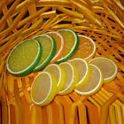 DECORATIVE ARTIFICIAL PLASTIC LEMON SLICES FAKE FRUIT HOME DECOR GOOD BLUELANS