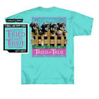 Tried and True Lab Puppy Fence Short Sleeve T-Shirt