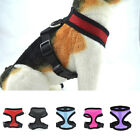 Pet Control Harness for Dog Puppy & Cat Soft Mesh Walk Collar Safety Strap Vest