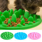Dog Puppy NON Slip Slow Feeder Food & Water Pet Bowl Anti Gulp/Choke/Bloat