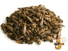 Dried Chubby Crickets - high in calcium treats for birds reptiles & large fish