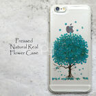 MAK Disegno Blue Tree Pressed Flower Case For Samsung Galaxy S8+ iPhone 7 Plus